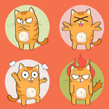 Cute cat character. Set of cute cartoon cat in various poses Royalty Free Stock Photo
