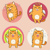 Cute cat character royalty free illustration