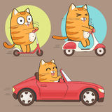 Cute cat character Stock Image