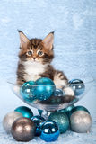Cute cat with Christmas balls Stock Photo