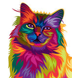 Cute cat colorful vector Royalty Free Stock Image