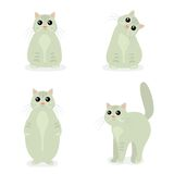 Cute Cat in different poses in flat design Royalty Free Stock Photos