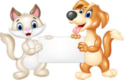 Cute cat and dog holding blank sign Stock Photos