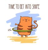 Cute cat doing fitness Royalty Free Stock Photos