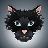 Cute cat face illustration. Vector illustration of a cute cat face with big blue eyes and stylized hair. Highly detailed Stock Photo