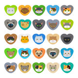 Cute cat faces in heart shape Royalty Free Stock Photos