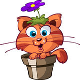 Cute cat in flower pot Royalty Free Stock Photography