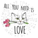 Cute Cat with flowers and All you need is love. Hand drawn lettering good for T-shirt design or greeting card,vector illustration Stock Images