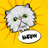 Cute cat head pop art.  on yellow background. Vector. Illustration Stock Images