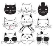 Cute cat heads. Set avatars pets. Stock Photo