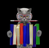 Cute cat holding a big stack of books -- isolated on black Stock Photography