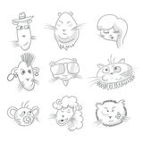 Cute cat icon set Royalty Free Stock Photos