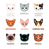 Cute cat icons, set I Stock Photo