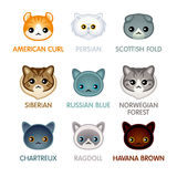 Cute cat icons, set II Royalty Free Stock Image