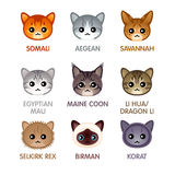 Cute cat icons, set IV. Kawaii cat breed head icons Royalty Free Stock Images