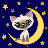 Cute Cat on the moon Royalty Free Stock Image