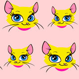 Cute cat pattern Stock Image