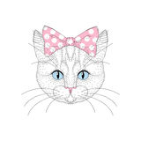 Cute cat portrait with pin up bow tie on head. Hand drawn kitty stock illustration