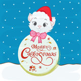Cute cat in Santa cap for Merry Christmas festival. Royalty Free Stock Photo