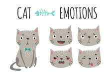 Cute cat. Set of emotions Royalty Free Stock Photography