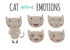 Cute cat. Set of emotions Stock Images