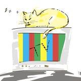 Cute cat. Cute cat sleeping on the TV. Vector Vector Illustration