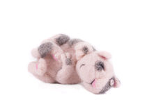 Cute cat toy. Royalty Free Stock Photography
