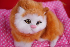 Cute cat toys Royalty Free Stock Photography