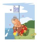 Cute Cat Traveler Cartoon Royalty Free Stock Images