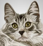 Cute cat Vector royalty free illustration