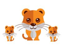 Cute cat vector on a white background vector illustration