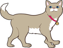 Cute cat. Very cute cartoon realistic style cat drawn in  beige brown color with a bell blue eyes walking Stock Images
