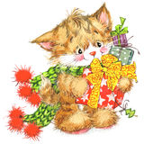 Cute cat. Watercolor funny cat and Christmas background Stock Photos