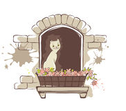 Cute cat in the window Stock Photo