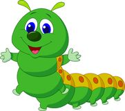 Cute caterpillar cartoon Stock Images