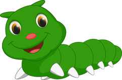 Cute caterpillar cartoon Stock Images