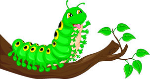 Cute caterpillar waving cartoon Stock Images