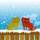 Cute cats Stock Photo