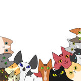 Cute cats card Royalty Free Stock Images
