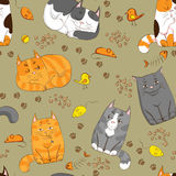 Cute cats. Cartoon seamless pattern with cute cats Royalty Free Stock Photography