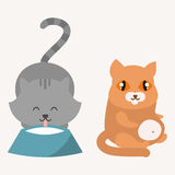 Cute cats character different pose funny animal domestic kitten vector illustration. Pet feline portrait fluffy young adorable mammal whisker pussy cartoon Stock Image