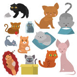 Cute cats character different pose funny animal domestic kitten vector illustration. Pet feline portrait fluffy young adorable mammal whisker pussy cartoon Royalty Free Stock Photos