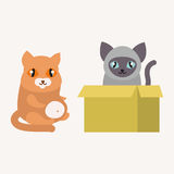 Cute cats character different pose funny animal domestic kitten vector illustration. Pet feline portrait fluffy young adorable mammal whisker pussy cartoon Royalty Free Stock Images