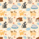 Cute cats character different pose vector seamless pattern. Cute cats character different pose vector illustration seamless pattern Royalty Free Stock Photo