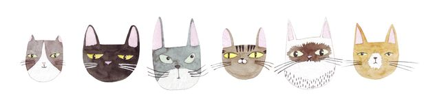 Cute cats collection on white background. Colorful graphic cats, poster design. Watercolor hand drawn illustration. Painted backdr