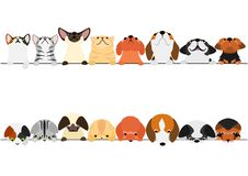 Cute cats and dogs looking up and down border set. With colors vector illustration