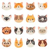 Cute cats faces. Happy animals, funny kitten smiling mouth and crying sad cat. Animal character face cartoon vector royalty free illustration