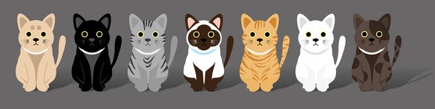 Cute cats gang Stock Photos