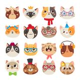 Cute cats heads. Cat muzzle, domestic kitty face wearing hat, scarf and color party glasses isolated cartoon vector set. Cute cats heads. Cat muzzle, domestic royalty free illustration