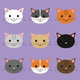 Cute cats heads illustration. Cartoon character. vector illustration